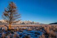 Grand Teton National Park, Thanksgiving Morning
